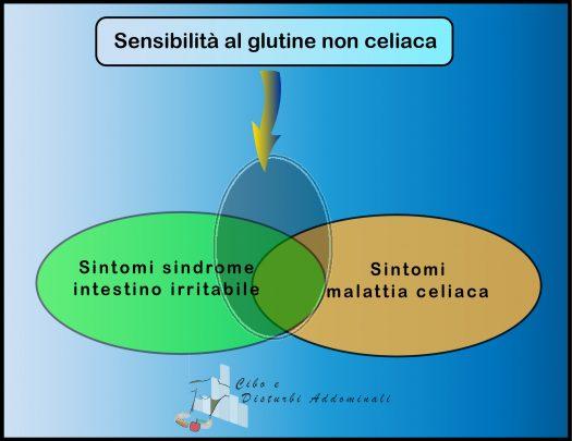 Sensibilità al glutine non celiaca: sfera dei sintomi
